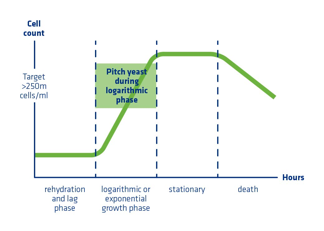 Figure 5. Graphical representation of yeast growth phases including lag, log (exponential growth), stationary, and death.