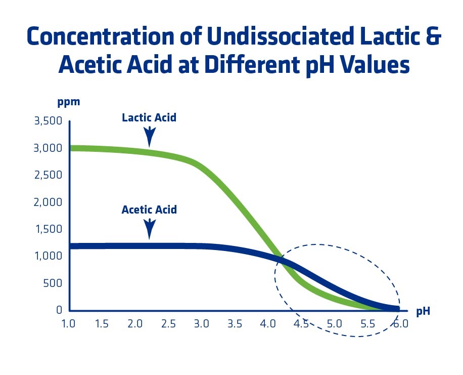 Figure 10. Calculated concentrations of undissociated lactic acid (0.3% w/v) and acetic acid (0.12% w/v).
