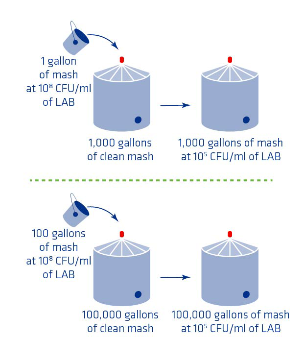 Figure 2. Potential impact of dead legs on mash bacterial counts.