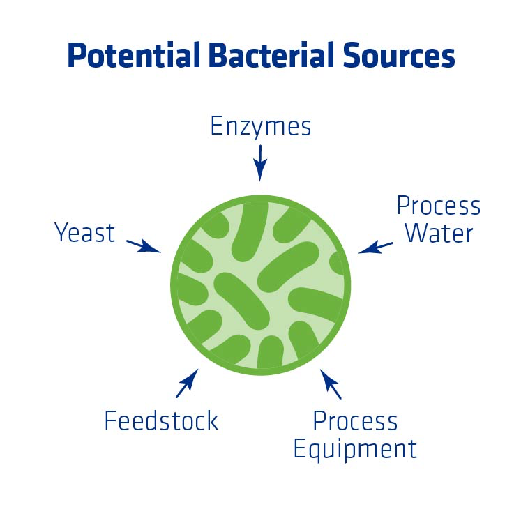 Figure 1. Fuel ethanol inputs that are the most common sources of bacteria.